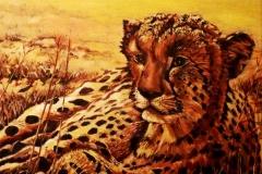Leopard_40_x_40_5